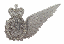 Weapon Systems Officer Royal Air Force RAF MOD Single Wing Nickel Pin Badge / Brevet